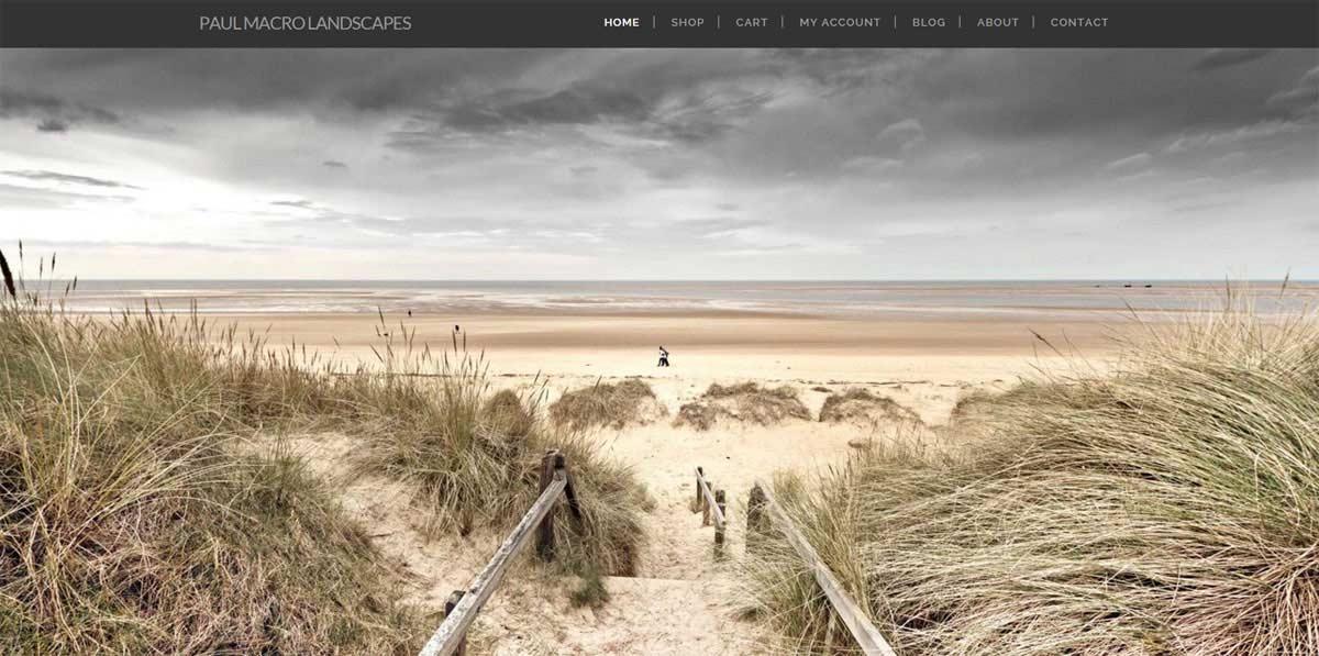 Paul Macro Landscapes